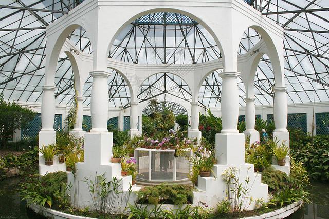 fotos jardim botanico do rio de janeiro:Instituto de Pesquisas Jardim Botânico do Rio de Janeiro – Agente