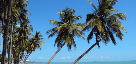 Paisagem beira-mar de uma das praias de Maceió.