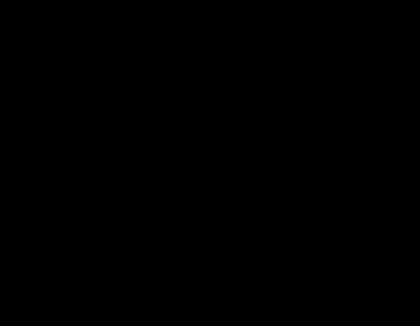 Figura de cachorro border collie